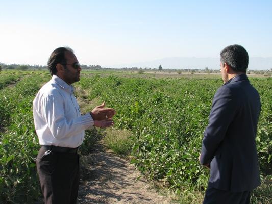 بهرهگیری از درآمدهای حاصل از فعالیت هنرستانهای کشاورزی در سرمایه گذاریهای جدید