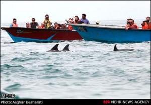 قشم در تب و تاب نوروز/ جزیره آماده پذیرایی از مهمانان