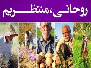 کشاورزی هرمزگان در ۱۰۰۰ روز دولت روحانی/ سایه پررنگ بی تدبیری دولت یازدهم در هرمزگان