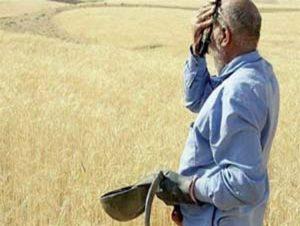 برجام کمر کشاورزان را شکست +جدول