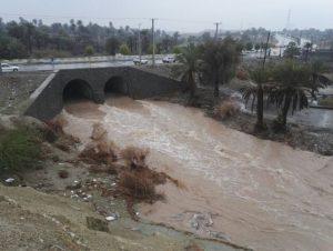 وضعیت بارندگی و طغیان رودخانه هادر بخش رودخانه رودان +تصویر