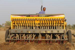 کاهش نیاز کشور به واردات روغن خوراکی باکاشت ۹۰۰ هکتاری کلزا در رودان +تصویر
