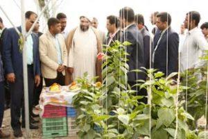 شش پروژه عمرانی رودان در دومین روز دهه فجر افتتاح شد