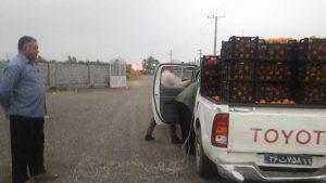 اهدای یک تن پرتقال به سیل زدگان میناب توسط خیر رودانی