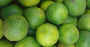 آغاز برداشت لیموشیرین از باغات شهرستان رودان